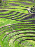Moray, Archaeological Site, Cuzco, Peru Photographic Print by Ivan Vdovin