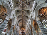 Exeter Cathedral, Exeter, Devon, UK Photographic Print by Ivan Vdovin