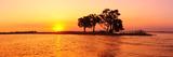 Sunset and Island, Chobe River Near Kasane,Africa, Botswana, Chobe National Park Photographic Print by Christian Heeb