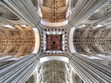Cathedral Church of the Holy and Undivided Trinity, Norwich, Norfolk, East England, UK Fotografie-Druck von Ivan Vdovin