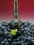 A Bottle of Red Wine with Black Grapes Photographic Print by Vladimir Shulevsky
