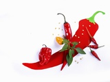 Various Fresh Chilli Peppers on a Picture of a Chilli Pepper Photographic Print by Bodo A. Schieren