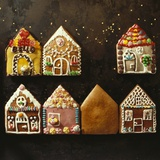 Home-Made Gingerbread in the Shape of Small Houses Photographic Print