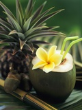 Opened Coconut with Straws and a Pineapple Photographic Print by Vladimir Shulevsky
