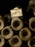 Old Wine Bottles in Jean-Louis Trapet's Wine Cellar, Burgundy Photographic Print by Joerg Lehmann