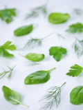 Various Fresh Herbs Photographic Print by Ira Leoni