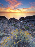 Italy, Sardinia, Olbia-Tempio District, Budoni, Coastline Photographic Print by Francesco Iacobelli
