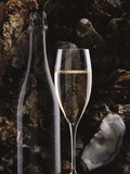 Champagne and Oysters Photographic Print