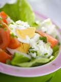 Lettuce, Egg, Tomato and Yoghurt Dressing Photographic Print