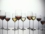 Various Types of Wine in Glasses Photographic Print