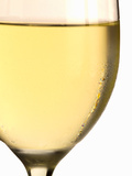 White Wine Glass with Condensation Photographic Print by Steven Morris
