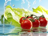 Tomatoes and Romaine Lettuce with Water Photographic Print by Karl Newedel