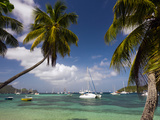 St. Vincent and the Grenadines, Bequia, Port Elizabeth, Admiralty Bay Photographic Print by Walter Bibikow