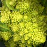 A Head of Romanesco Photographic Print by Steven Morris