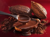 Chocolate Sauce, Cocoa Powder, Cocoa Beans and Cacao Fruits Photographic Print by Karl Newedel