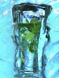 Mojito with Fresh Mint Surrounded by Ice Photographic Print by Michael Meisen