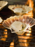 Scallops on Barbecue Photographic Print