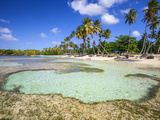 Dominican Republic, Samana Peninsula, Las Galleras, La Playita Beach Photographic Print by Jane Sweeney