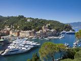 Portofino, Riviera Di Levante, Liguria, Italy Photographic Print by Jon Arnold