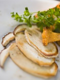 Fried Cep Slices and Chanterelle with Parsley Photographic Print
