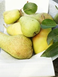 Fresh Pears with Leaves in Bowl Photographic Print
