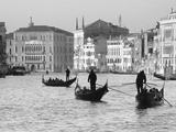 Gondoliers on the Gran Canal, Venice, Veneto Region, Italy Photographic Print by Nadia Isakova