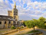 France, Provence, Avignon, Cathedral Notre-Dame-Des Doms, Woman Walking Down Path Photographic Print by Shaun Egan