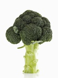 A Head of Broccoli Photographic Print by Dieter Heinemann