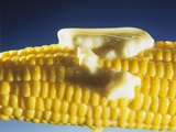 Cooked Corn on the Cob with Melting Butter Photographic Print by Ludger Rose