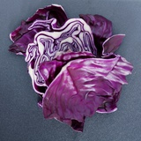 Red Cabbage (Two Pieces) Photographic Print by Alexander Feig
