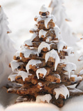 Gingerbread Trees with Glacé Icing Photographic Print