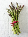 A Bundle of Green Asparagus Photographic Print by Paul Williams