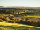 Newlands Corner, Guildford, North Downs, Surrey, England, UK Photographic Print by Jon Arnold