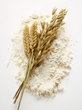 Ears of Wheat and Oats on Flour Photographic Print