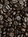 Coffee Beans Photographic Print by Stephen Pennells