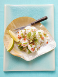 Ceviche: Fish Fillet with Coriander and Peppers Photographic Print