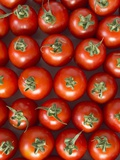 Roma Tomatos Photographic Print by Martina Schindler