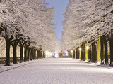 Italy, Umbria, Terni District, Terni, 'Passeggiata', Public Garden in Winter Photographic Print by Francesco Iacobelli