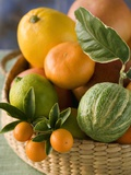 Basket of Assorted Citrus Fruit Photographic Print by Vladimir Shulevsky