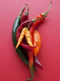 Various Chillies Photographic Print by Malgorzata Stepien