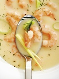 Prawn Soup with Leeks and Dill Photographic Print by Dieter Heinemann