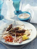 Minced Lamb Kebab with a Yogurt Dip Photographic Print