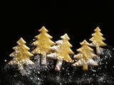 Pastry Christmas Trees with Pearl Sugar Lámina fotográfica