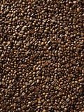 Coffee Beans Photographic Print by Michael Löffler