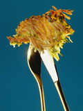 A Potato Rosti on Cutlery Photographic Print by Michael Tessmann