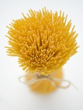 A Bundle of Spaghetti Fotografisk tryk