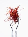 Saffron Threads in Tongs Fotografisk tryk af Marc O. Finley