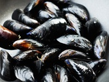 Mussels Photographic Print by Roger Stowell