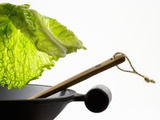 Savoy Cabbage Leaf Falling into a Wok Papier Photo par Jean-Michel Georges