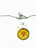 Slice of Lemon Falling into Water Photographic Print by Paul Blundell